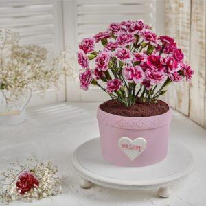 کیک گلدانی میخک برای مادران
